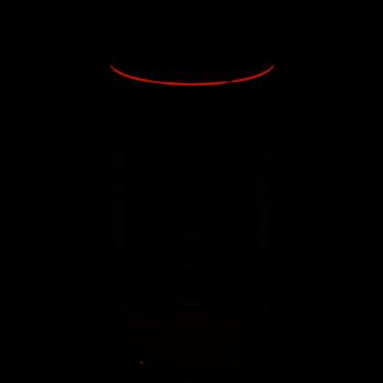 CANON RF 100-500MM...