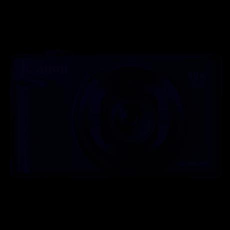 CANON POWERSHOT SX740HS ARGENT + ETUI + GORIL